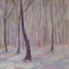 winter-im-wienerwald