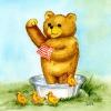 Der Waschbär