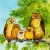 Die Eulenfamilie