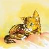 trauriges-katzchen