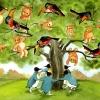 der-vogelbarbaum